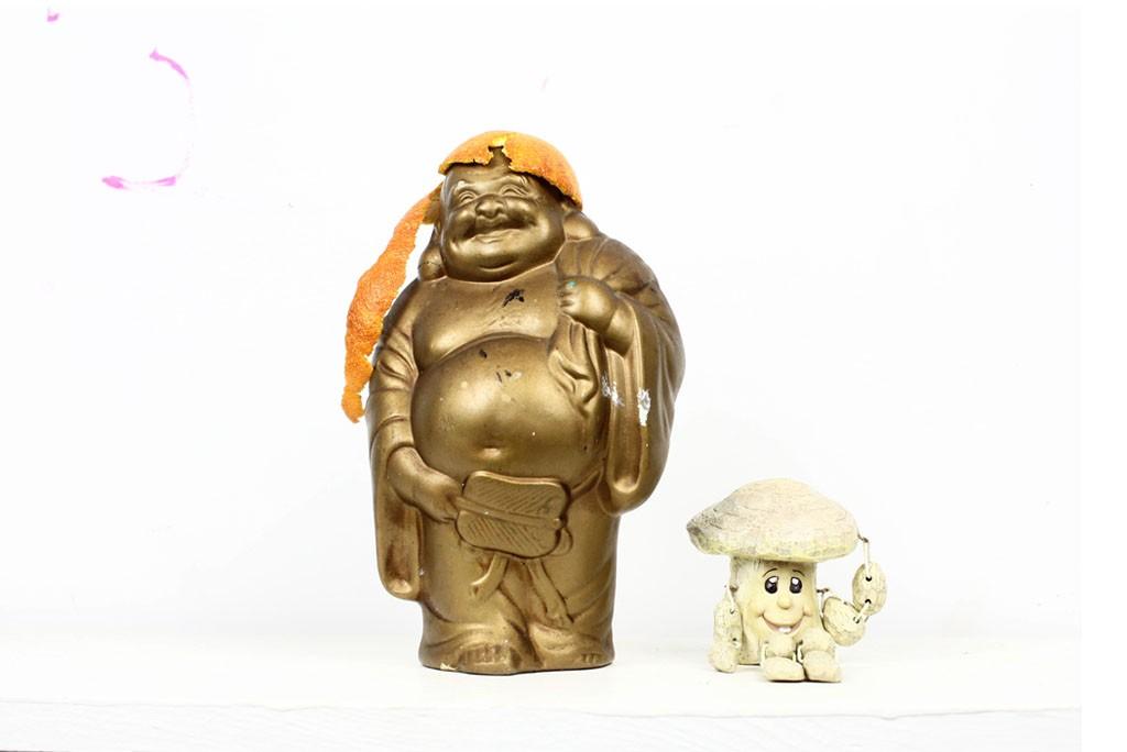 buddha shroom snack skateboads