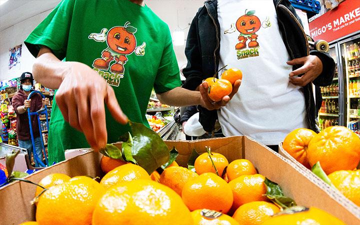 snack-skateboards-summer-21-lookbook-web-size-p4-oranges